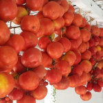 Tomate de ramellet